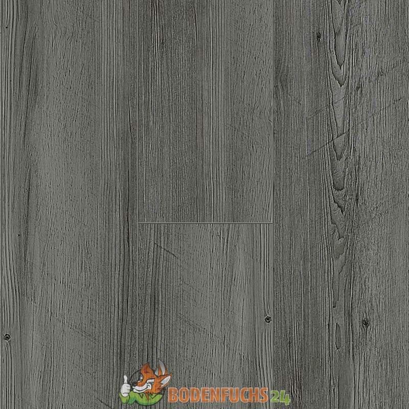 balterio urban kiefer caribou 60051 laminat g nstig. Black Bedroom Furniture Sets. Home Design Ideas