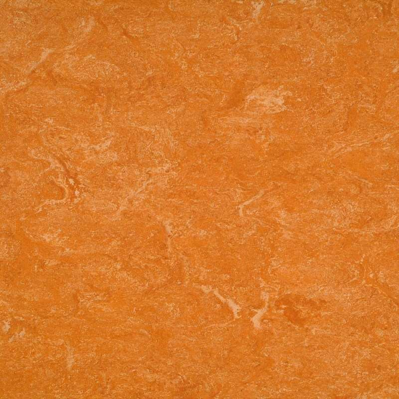 dlw marmorette lpx spicy orange 121 073 linoleum gesunder bodenbelag naturboden bioboden. Black Bedroom Furniture Sets. Home Design Ideas