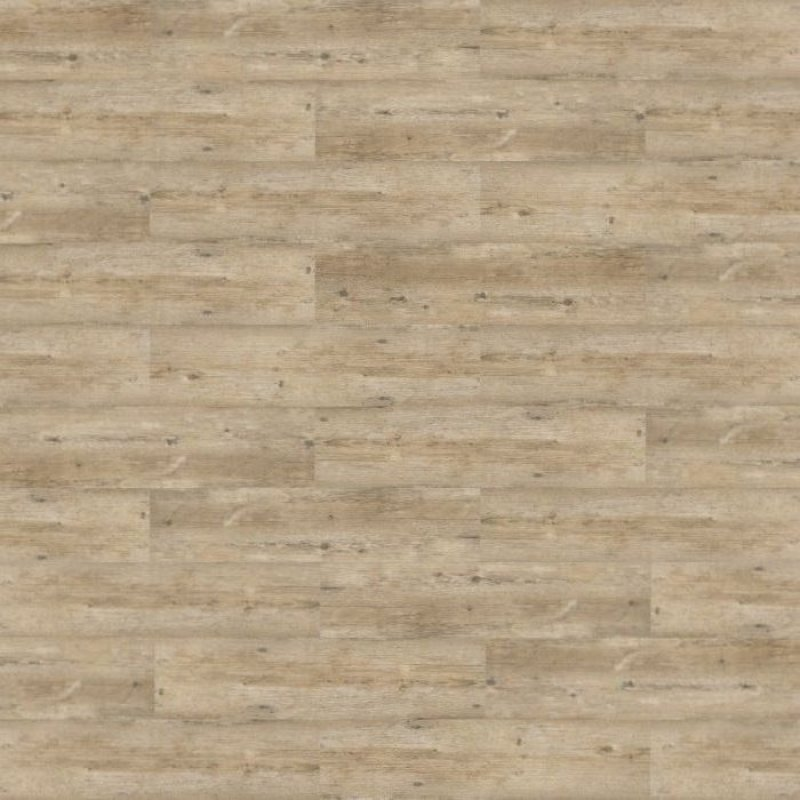 kwg samoa pinie grau antik 402016 klick kork korkboden. Black Bedroom Furniture Sets. Home Design Ideas