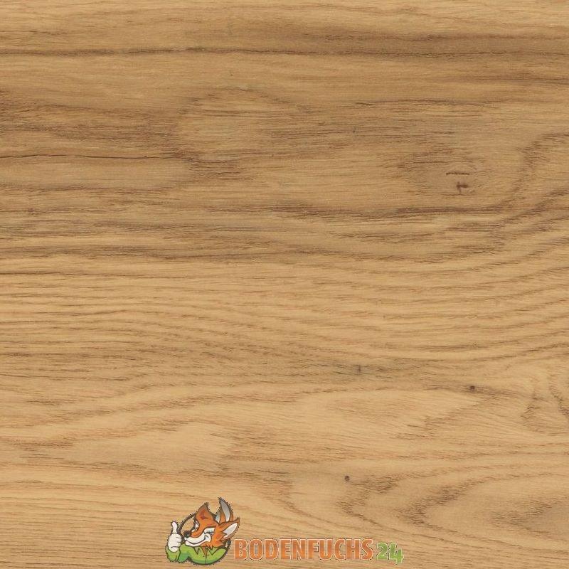 wineo 1000 bioboden canyon oak pl007r bio vinylboden designbodenbelag g nstig kaufen. Black Bedroom Furniture Sets. Home Design Ideas