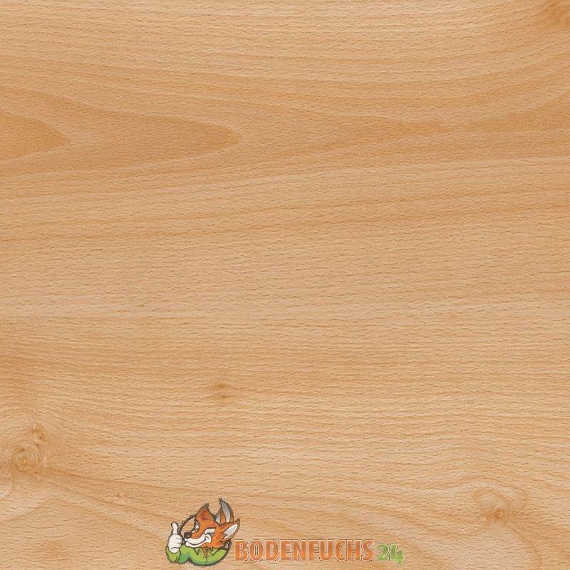 wineo 1000 bioboden summer beech pl047r bio vinylboden designbodenbelag g nstig kaufen. Black Bedroom Furniture Sets. Home Design Ideas