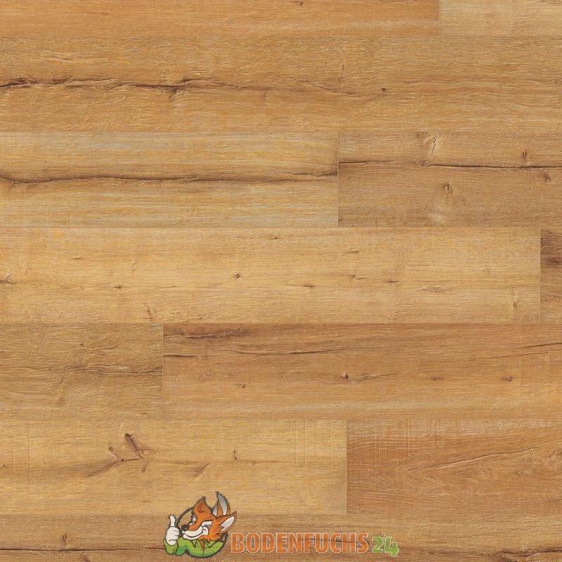 wineo 500 xl v4 tirol oak honey la044xlv4 laminat. Black Bedroom Furniture Sets. Home Design Ideas