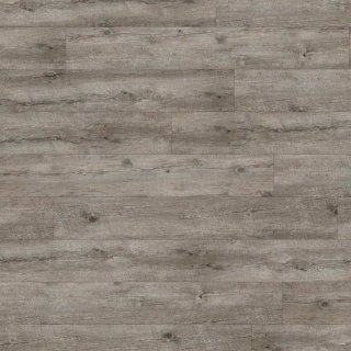 DLW Armstrong Scala 55 Connect - Rustic Pine Silver 25328-151 | Klick-Vinylboden
