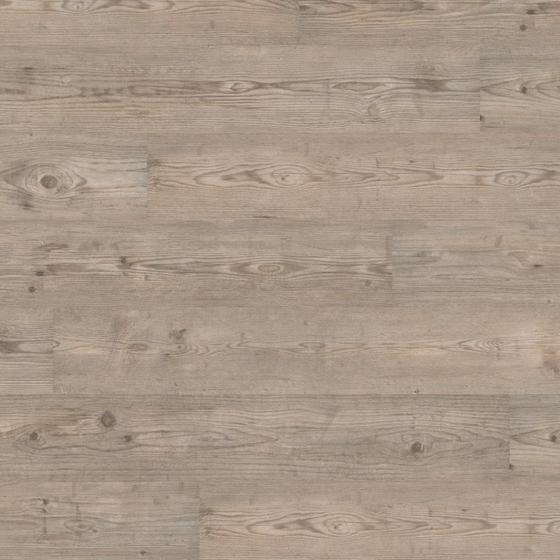wineo 300 welsh pale oak la008 laminat g nstig. Black Bedroom Furniture Sets. Home Design Ideas
