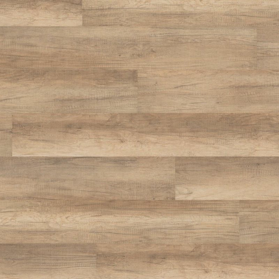 Wineo - Sockelleiste SO Welsh Pale Oak F54013UY60 | Laminat