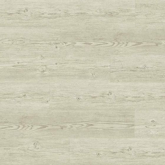 Tarkett - Sockelleiste Brushed Pine White 26640386