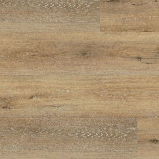 Wineo 400 - Sockelleiste SO Joy Oak Tender F54016UY60
