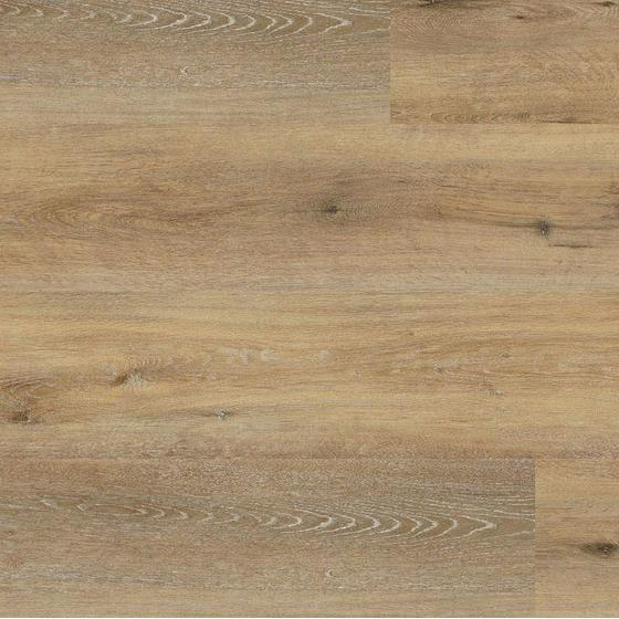 wineo 400 klick xl joy oak tender dlc00126 klick vinylboden klickvinylboden klickvinyl g nstig. Black Bedroom Furniture Sets. Home Design Ideas